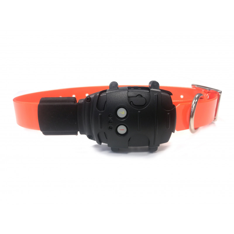 Collier Gps Geonimo Chien De Compagnie Collier Balise Gps